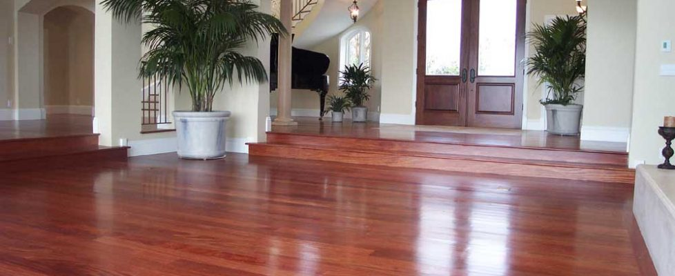 Advantages and Drawbacks of Mahogany Hardwood Flooring