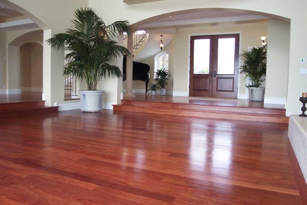 Advantages and Drawbacks of Mahogany Hardwood Flooring